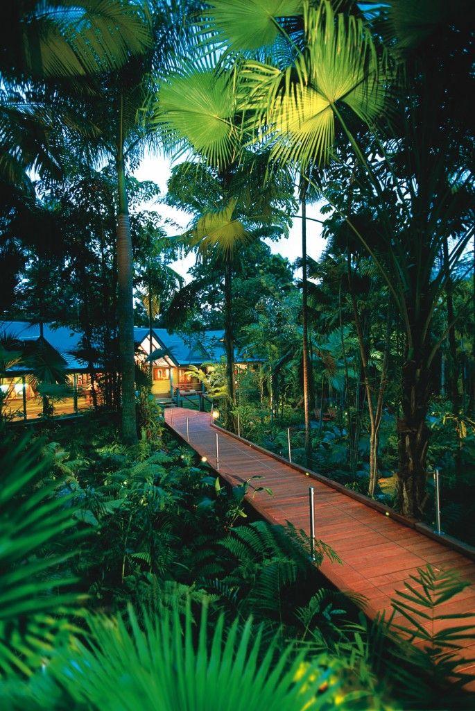 Silky Oaks Lodge - North Queensland, Australia | tropical rainforest - Daintree Forest