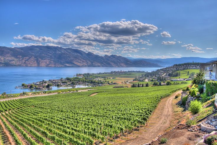 The absolutely beautiful place I call home, Okanagan Valley, British Columbia. - Imgur