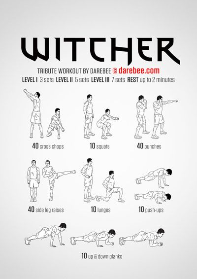 the witcher 2 guide pdf