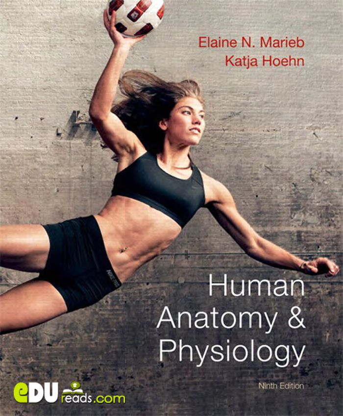 HUMAN ANATOMY & PHYSIOLOGY 9TH EDITION - This book makes studying anatomy and physiology as engaging, accurate, and relevant as possible for both instructors and students. ** studying medicine ** Additional tags: human anatomy and physiology, human anatomy and physiology marieb, anatomy and physiology book, anatomy and physiology textbook ** #humananatomy #anatomy #physiology #Marieb #AnatomyBook #MedicalBooks #humanphysiology #EduReads **