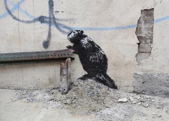 Banksy's New York Project Took a Very Brooklyn Turn Today   – Street Art