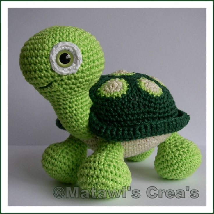 I love this little turtle!