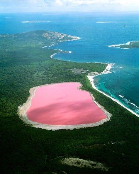 Pink Lake, Australien Bakterien und Algen färben einen See auf der Insel Middle Island an der Südwestküste Australiens pink. Das 600 Meter lange Gewässer, auch Lake Hillier genannt, lässt sich allerdings nur von oben bestaunen, denn die Insel Vogelschutzgebiet ist