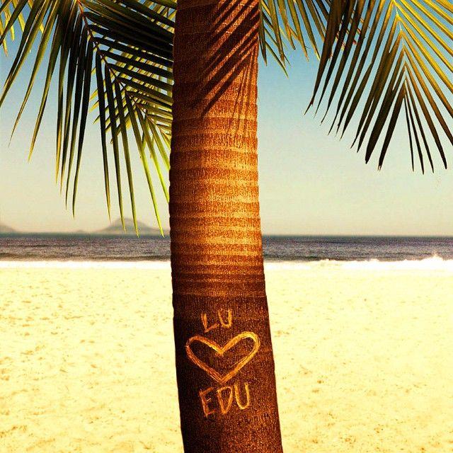 Coconut tree, Ipanema Beach, Rio de Janeiro, Brasil