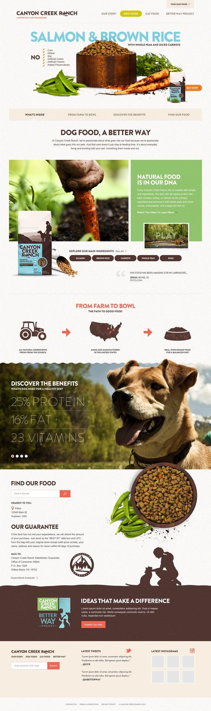 CanyonCreek Dog Food Web Design