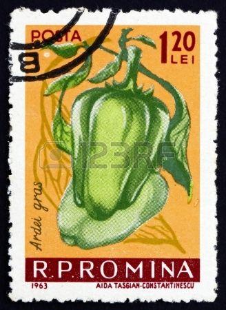 PIMENTO VERDE. Há vermelhos e amarelos. Para saladas, assados  e acompanha sardinha assada - ROMANIA - CIRCA 1963: a stamp printed in the Romania shows Mild Peppers, Capiscum, Fruit, circa 1963