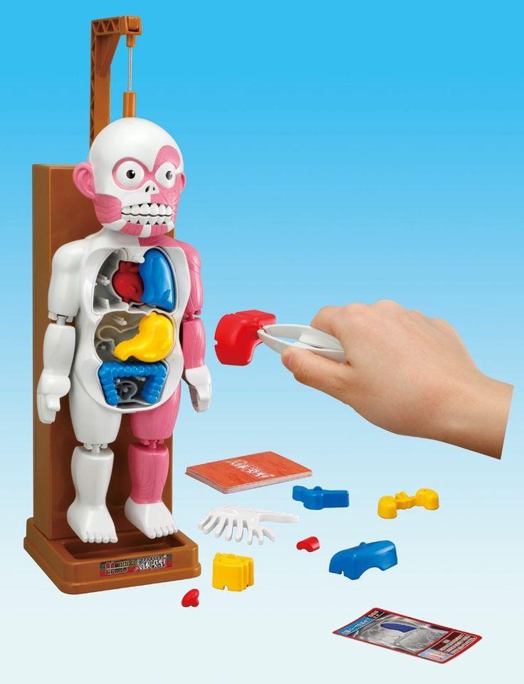 Barato 1 conjunto MESTRE 4D GINÁSTICA ROBÔ corpo humano modelo Dos Desenhos Animados Engraçado horror brinquedo corpo para brincadeira. educação brinquedo para crianças, Compro Qualidade Kits modelo de Construção diretamente de fornecedores da China: 1 conjunto MESTRE 4D GINÁSTICA ROBÔ corpo humano modelo Dos Desenhos Animados Engraçado horror brinquedo corpo para brincadeira. educação brinquedo para crianças