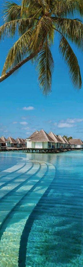 #Maldives #Resort #Ocean Villa View