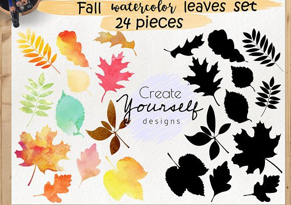 Check out this item in my Etsy shop https://www.etsy.com/listing/538946174/fall-leaves-clipart-autumn-leaves