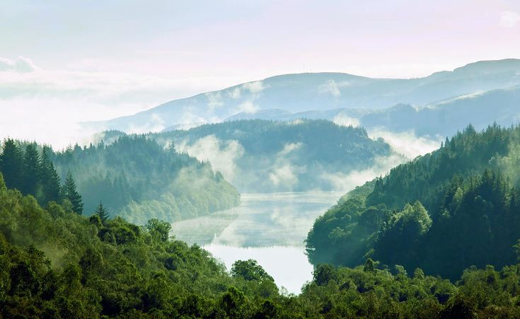 Morning Delight. Trossachs National Park. Scotland by Jenny Rainbow