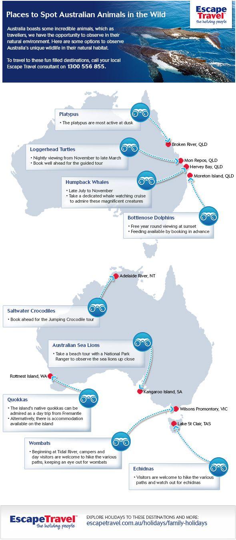 Where To Spot Australian Animals In The Wild - http://travl.to/kAuFd