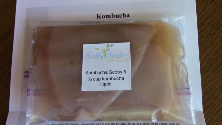 Order HFFG's Kombucha Starter Kit and make your own kombucha for much less than store-bought!
