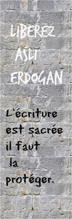 Asli Erdogan, auteure turque