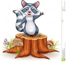 Billedresultat for funny raccoons drawing