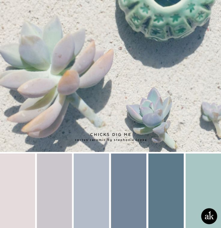 a succulent-inspired color palette // chalky pink, purple, blue, green