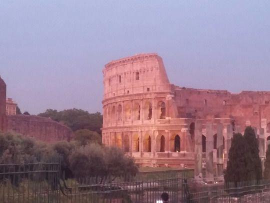 Una Roman DElia