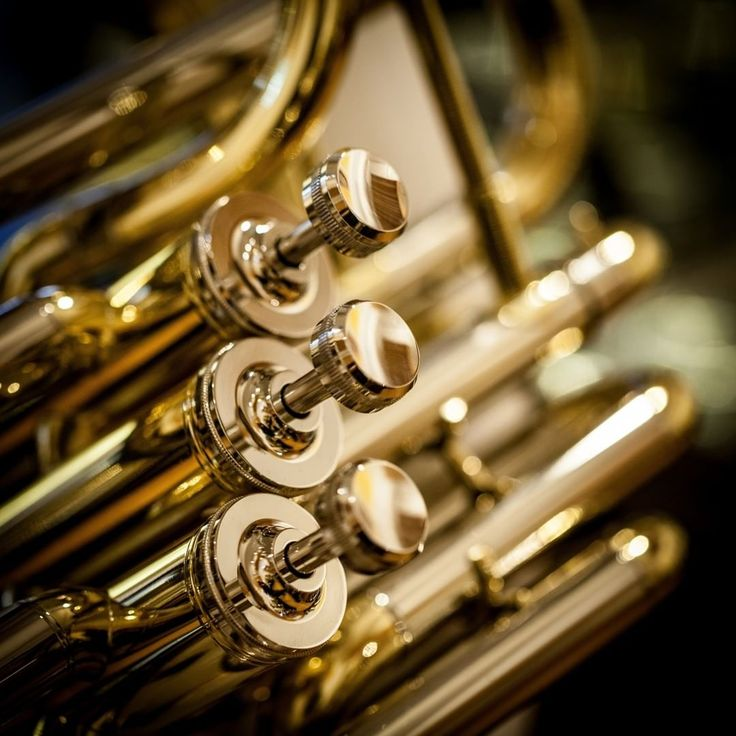 Thomann SHF-300 Bb-Sousaphone MKII Fib #thomann #sousaphone #mkII #fib #woodwinds #tuba #thomann #musicisourpassion #brass #music #instamusic#instapic #instagram