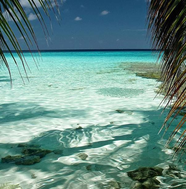 Maldives... <3<3 where Jeremy and I will be having our relaxation honeymoon!! :D