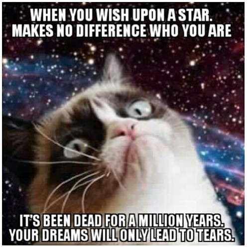 Grump cat getting all Carl Sagan on you! BILLIONS!