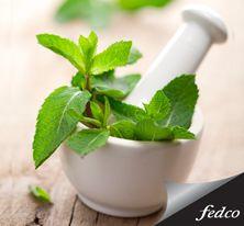 Entre los ingredientes utilizados en los productos de Palladio están los antioxidantes como el ginseng, té verde, Gingko Biloba, vitamina E y humectantes naturales como el aloe vera y la manzanilla. Palladio es hermoso y beneficioso. http://tienda.fedco.com.co/Catalogo/maquillaje/todos/marca/Palladio