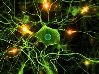 "neuron - the basic unit of thinking.  But it's the connection between neurons that make ""thinking"" profound."
