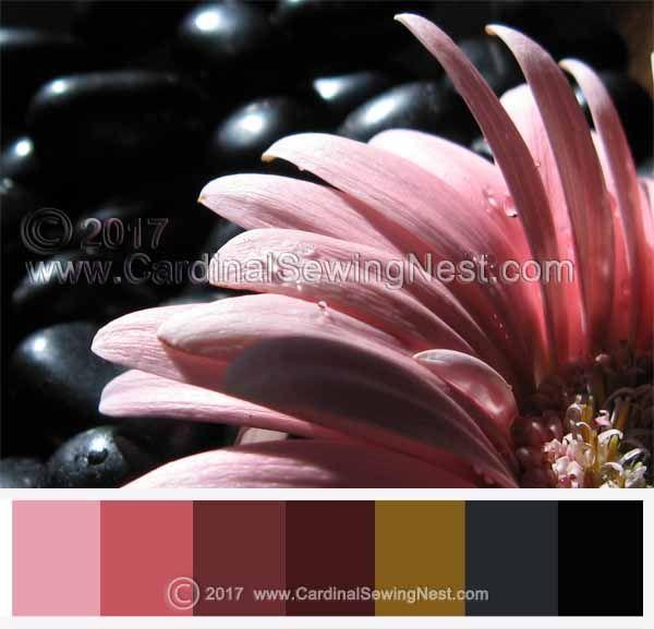 Taking Flight. Pink and black color palette