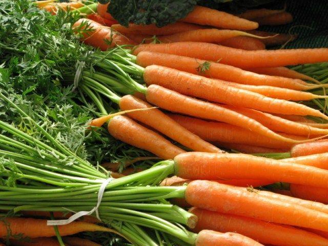Planter les épluchures et restes de légumes pour les faire repousser ! (2)