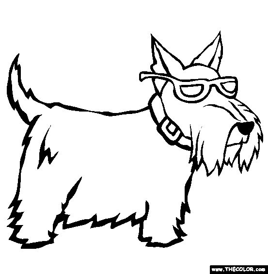 Scottish Terrier Coloring Page | Free Scottish Terrier Online Coloring