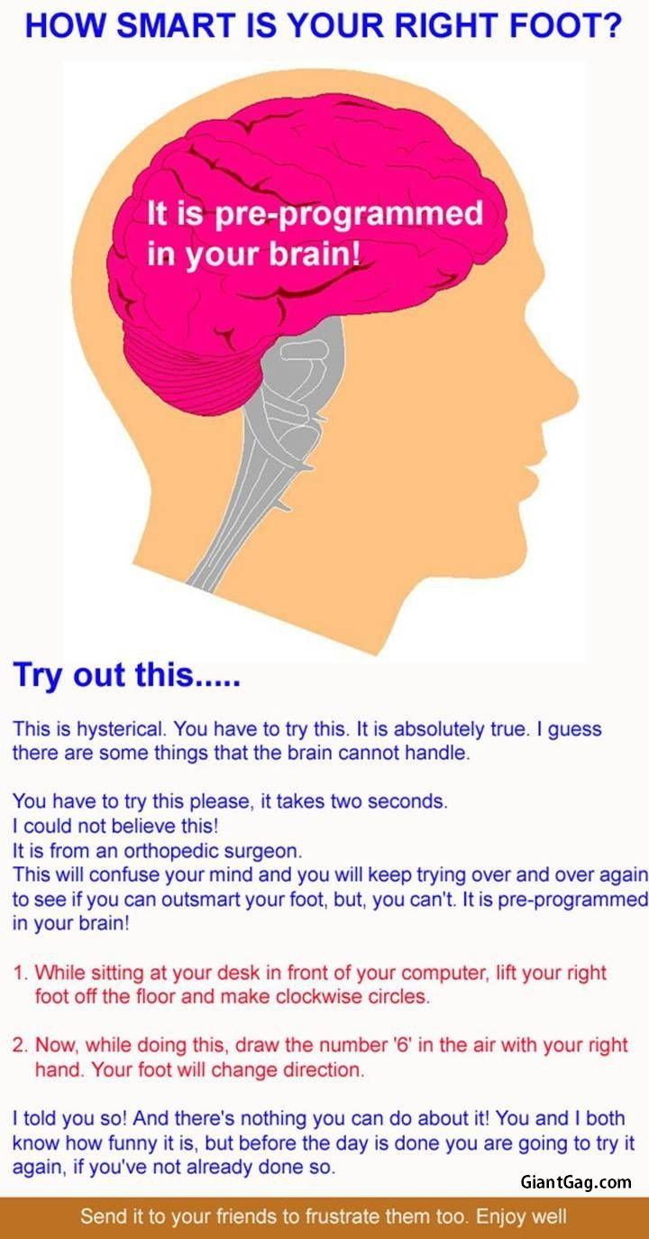 How Smart Is Your Right Foot? It Is Pre-Programmed In Your Brain.,  Click the link to view today's funniest pictures!