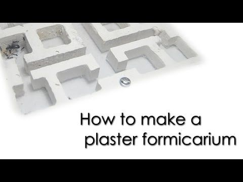 How to make a plaster formicarium - YouTube