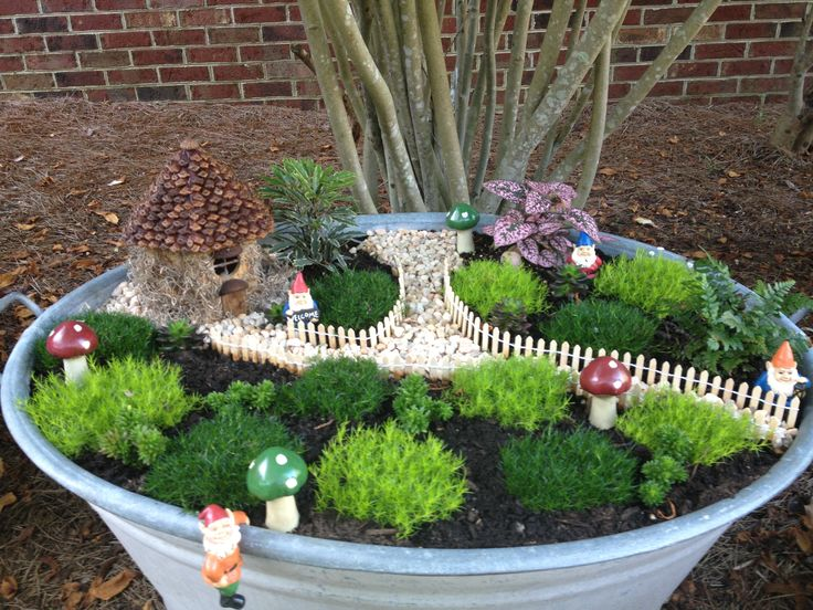 Www Garden Gonme: 725 Best Images About Fairy Gardens On Pinterest