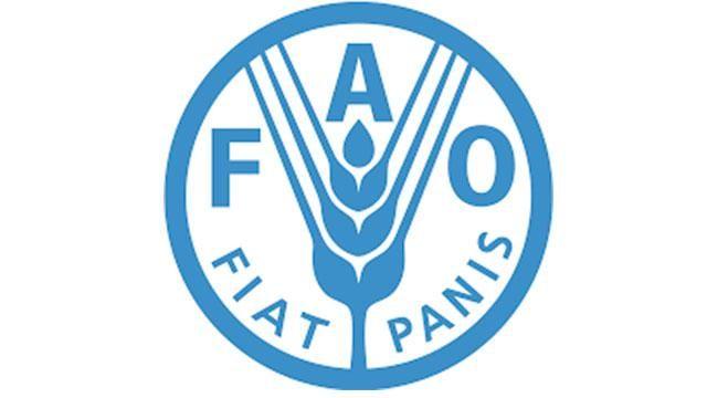 Participa Gobierno CDMX en segunda reunión de alcaldes organizada por la FAO