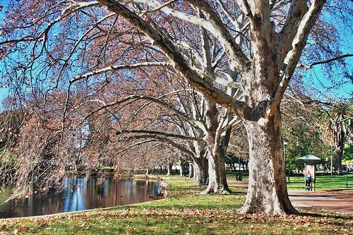 Hyde Park, Perth, Western Australia