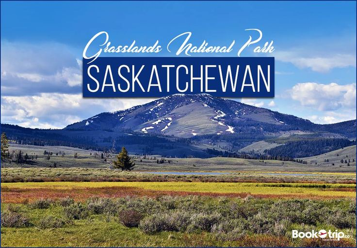 #GrasslandsNationalPark represents the Prairie Grasslands natural region, protecting one of the nation's few remaining areas of undisturbed dry mixed-grass/shortgrass prairie grassland. Call to Book: (888) 379-1003 BookOtrip.ca #travelforless