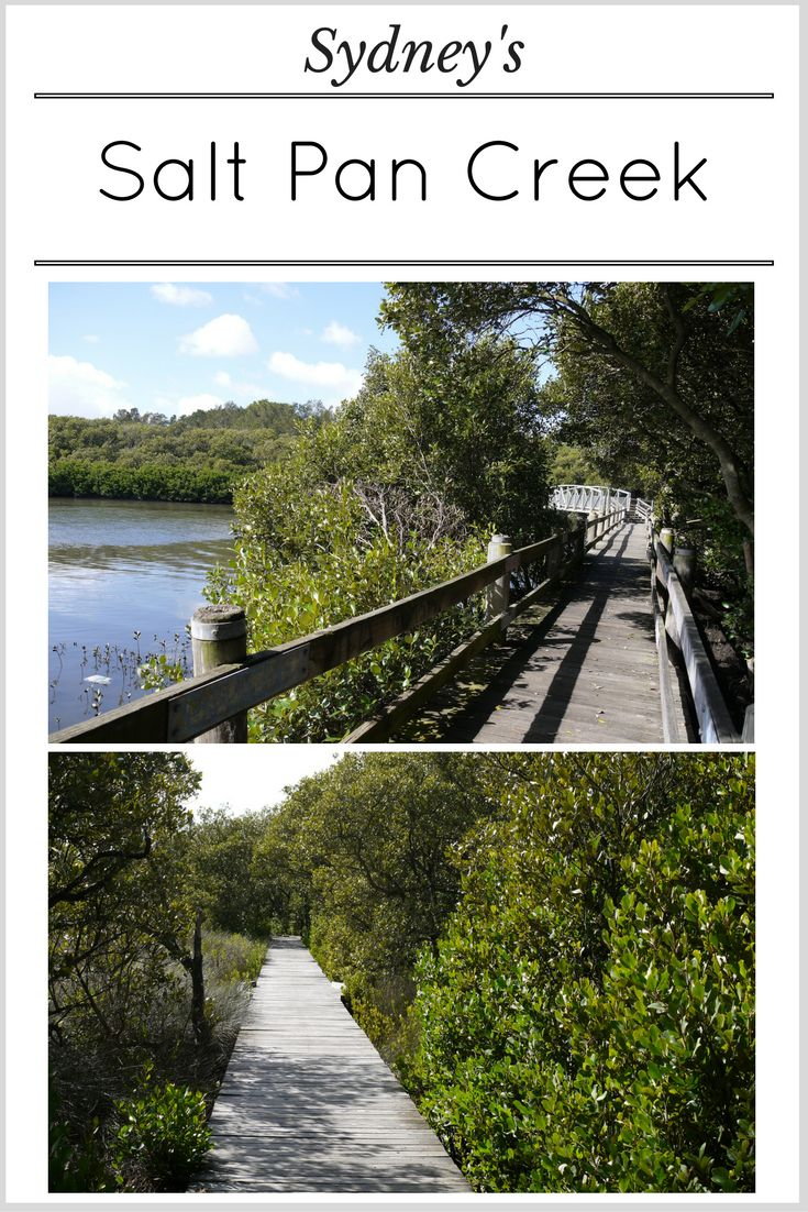 Take a walk through this beautiful and varied hidden wetland ecosystem in Sydney's South West