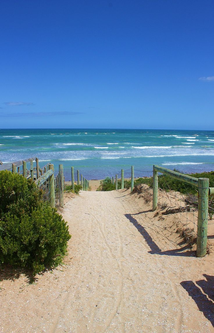 the path that leads down to Ocean Grove beach (Victoria, Australia)