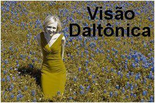 Teste de Daltonismo Online | Voce Reporter