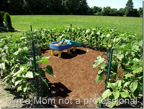 Sunflower Garden Ideas acrylic flowers Oh So Cute Sunflowers Play House Perfect To Also Provide Some Late Summer Shade If