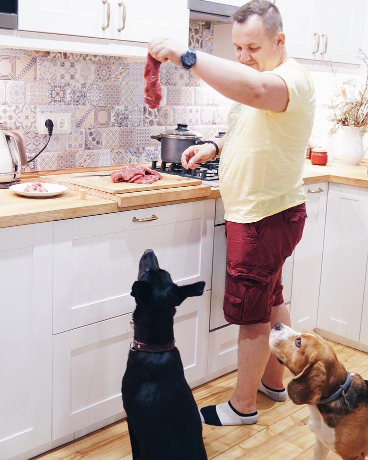 ▫️Dogs lover. Beagle Misha the Cutlet. Adopted  Muha Vatruha.▫️DogsFrogs Team. Photographer.