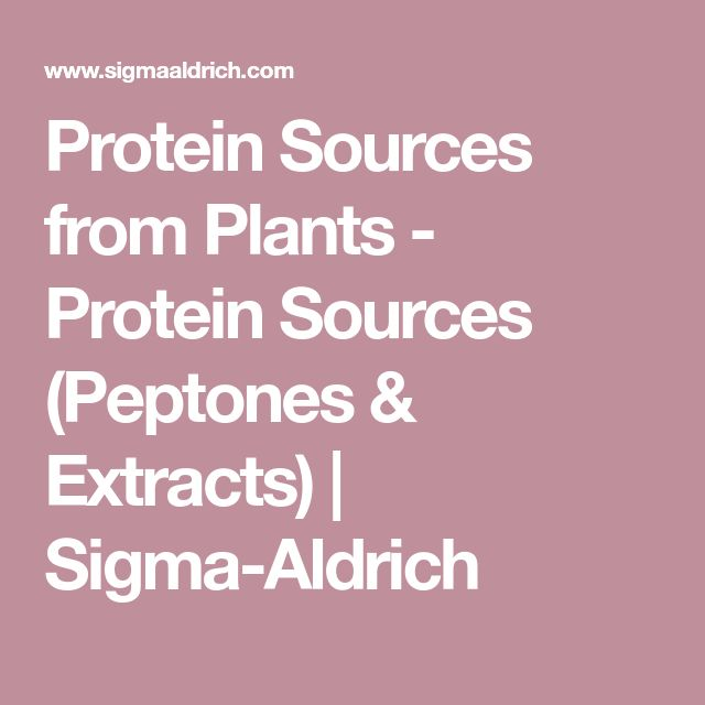 Protein Sources from Plants - Protein Sources (Peptones & Extracts)   Sigma-Aldrich