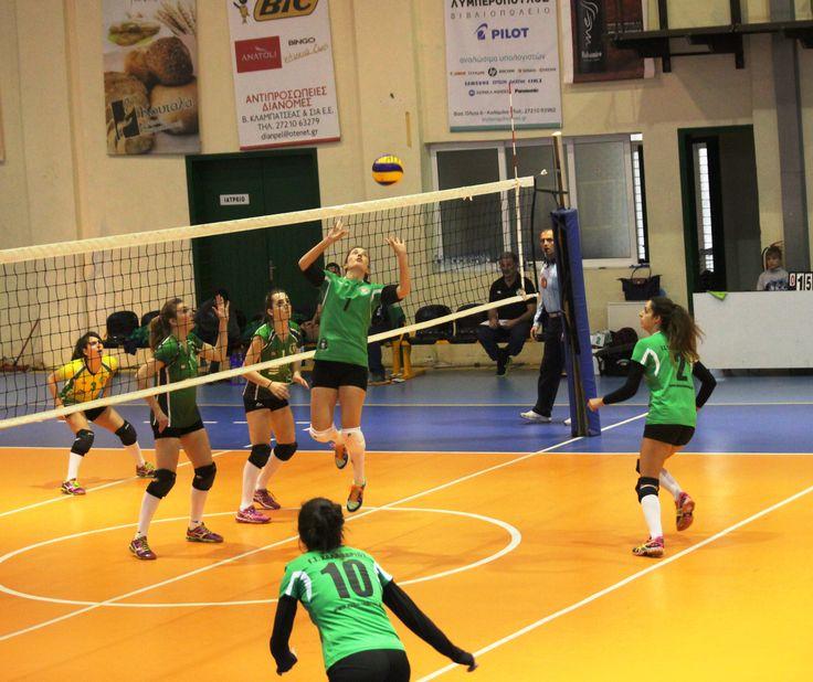 Womens' team 20142015