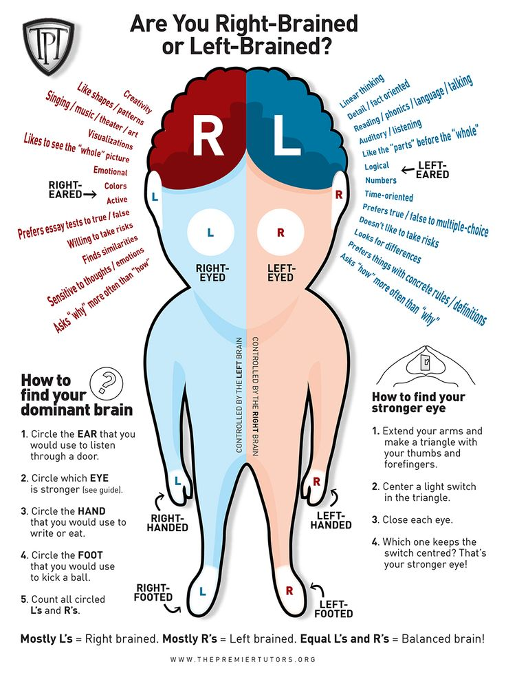 Are You Right-Brained Or Left-Brained - BrainTrainingcom