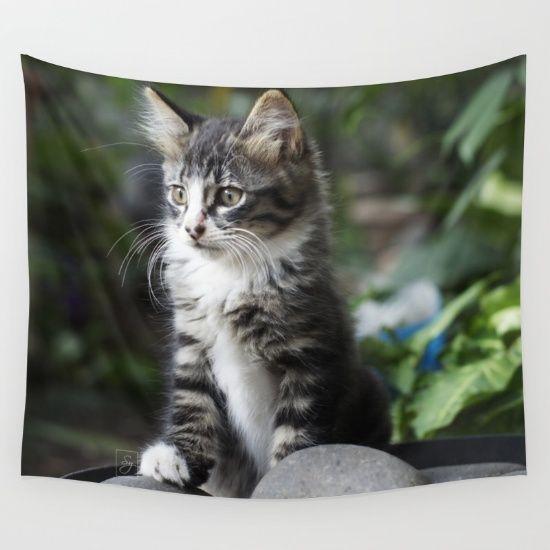 #cat #kitten #pets #pet #animal #animal #domesticanimal #cute #blackcat #blackkitten #photography #nature #society6 #homedecor #tapestry #decoration