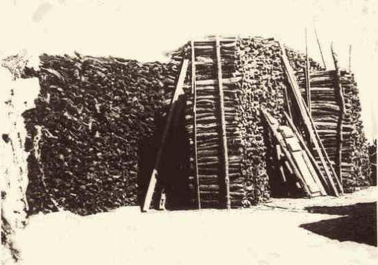 Brennholzlager hinter unserer Werkstatt um 1942.