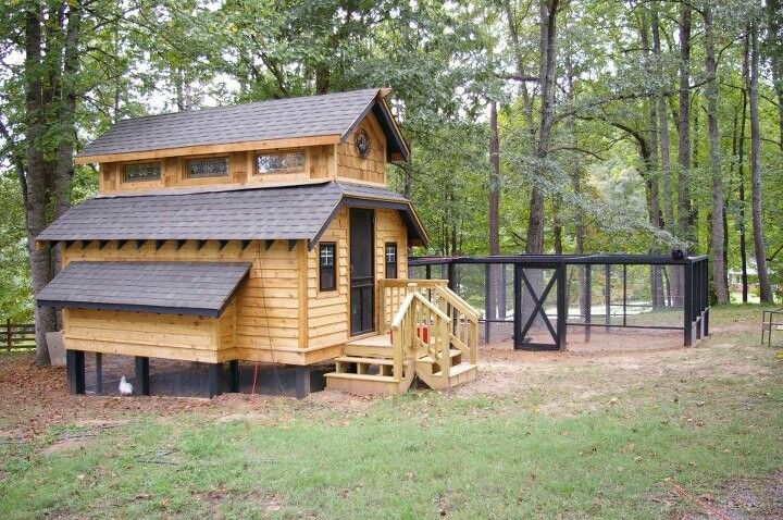 Chicken house - wouldn't the girls love this?