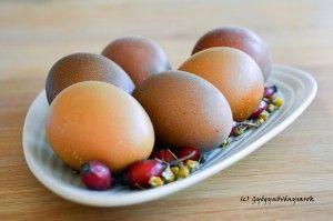 Húsvéti tojások gyógynövényekkel