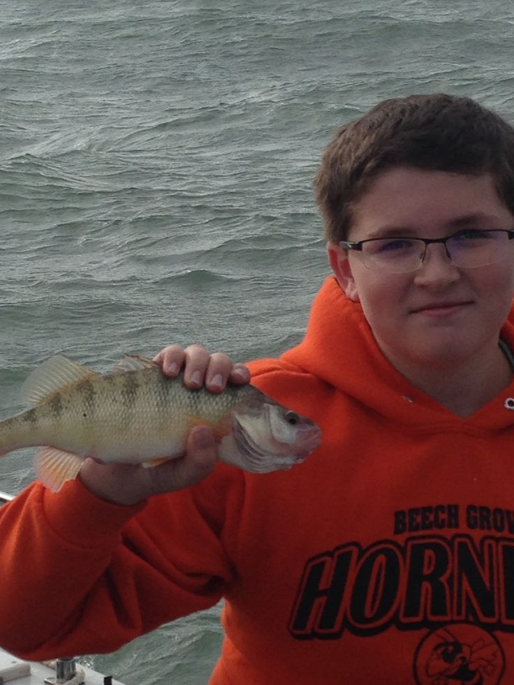 22 best images about perch fishing on lake erie on for Lake erie pier fishing