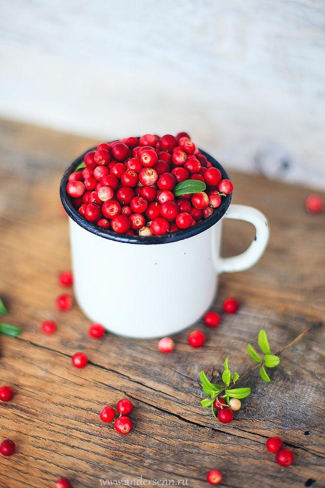 Брусника, ягоды, натюрморт, кружка, еда, cowberries, foxberries, still, berries, food