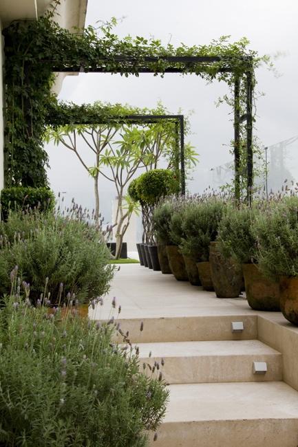 Casa Claudia garden (jardin)