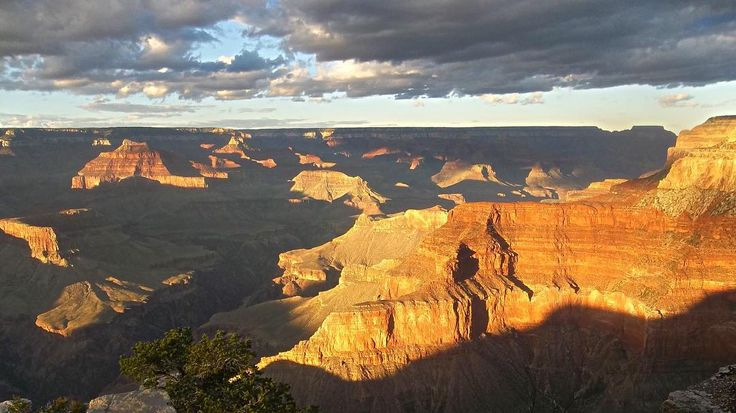 """Writing a book of poetry is like dropping a rose petal down the Grand Canyon and waiting for the echo"" (Don Marquis)"